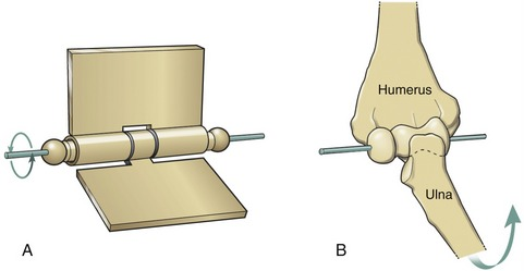 basic structure and function of human joints | clinical gate, Cephalic Vein