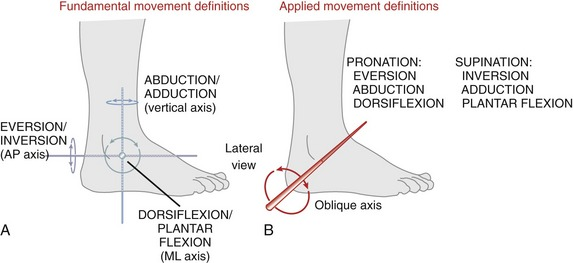 Ankle And Foot Clinical Gate