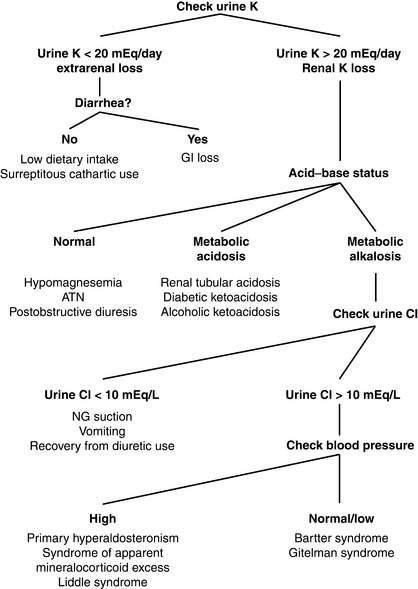 hypokalemia and hyperkalemia | clinical gate, Skeleton