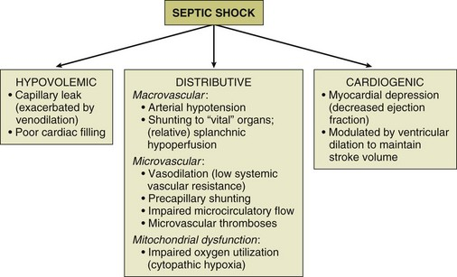 septic shock | clinical gate, Skeleton