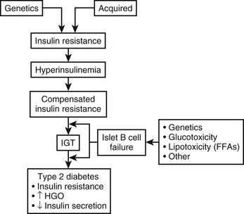 pathophysiology of type 2 diabetes Pathophysiology of diabetes mellitus type 2 - free download as word doc (doc), pdf file (pdf), text file (txt) or read online for free pathophysiology of diabetes mellitus type 2.