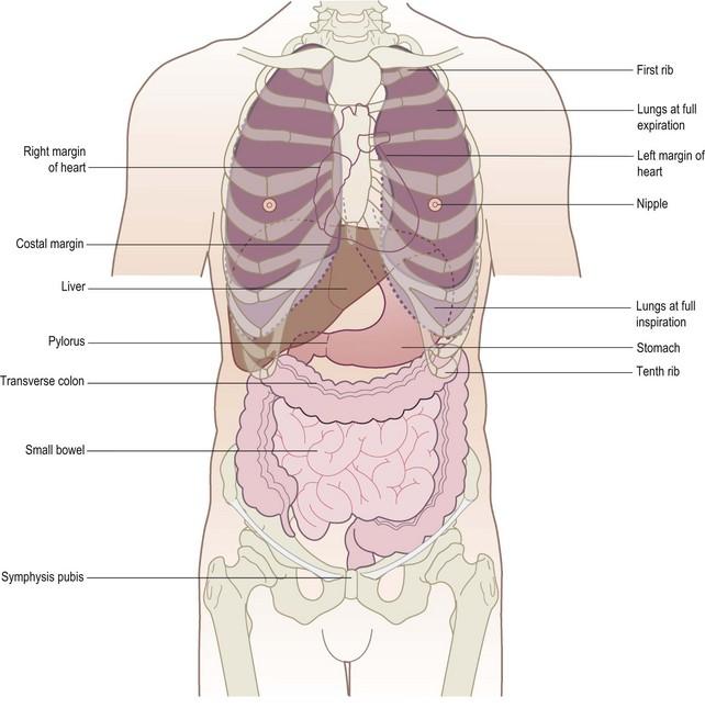 Gastrointestinal System Clinical Gate