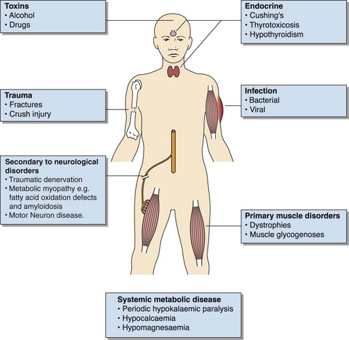 amyloidosis a progressive metabolic disease The group of metabolic cardiomyopathies comprises a heterogenous group of myocardial disease secondary to a disruption in metabolism metabolic cardiomyopathy associated with diabetes mellitus is.