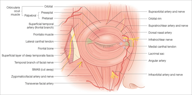 Periocular Reconstruction Clinical Gate