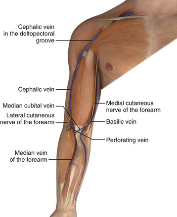 venous cutdown | clinical gate, Cephalic vein