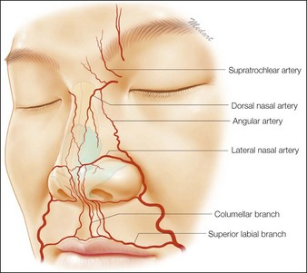 Nose | Clinical Gate
