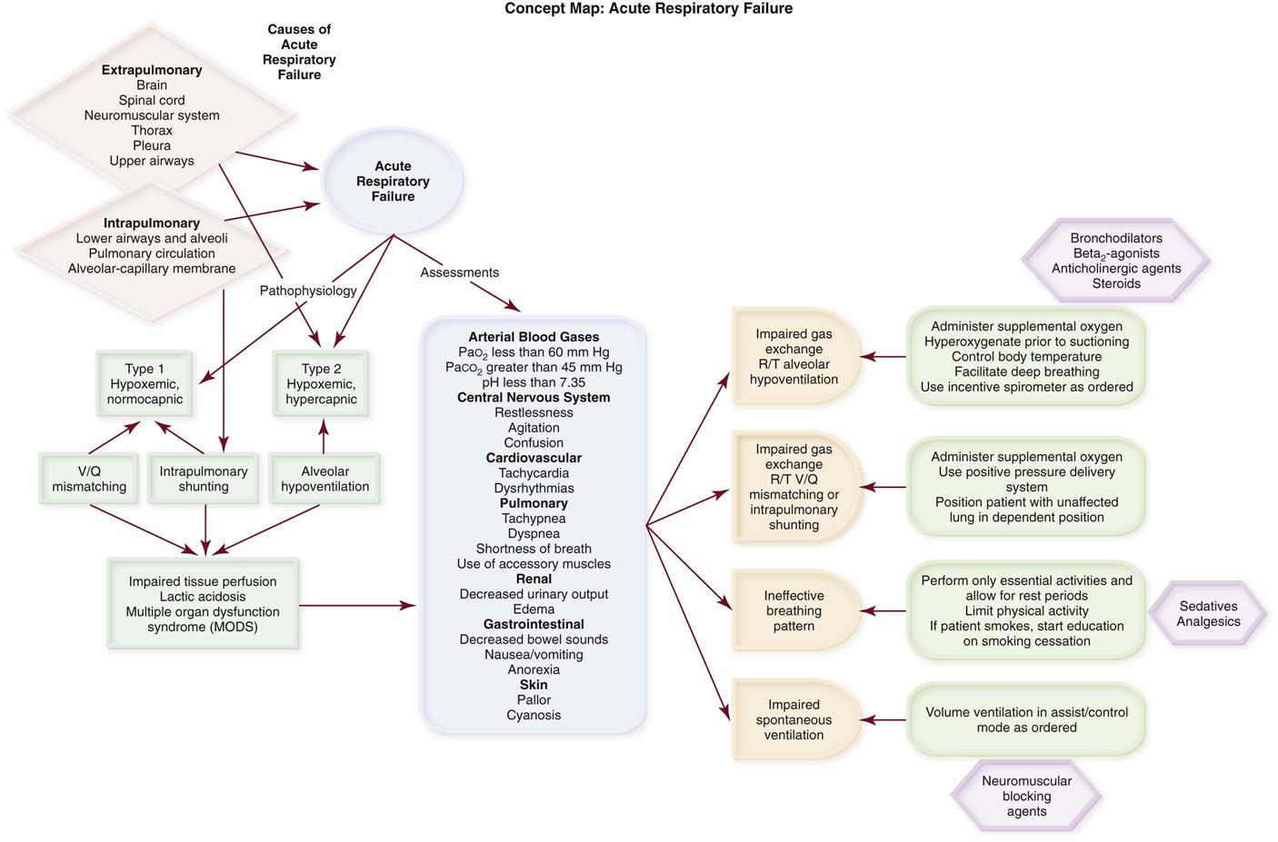 Pulmonary And Systemic Circulation Concept Map.Pulmonary Disorders Clinical Gate