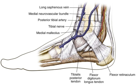 Foot And Ankle Clinical Gate