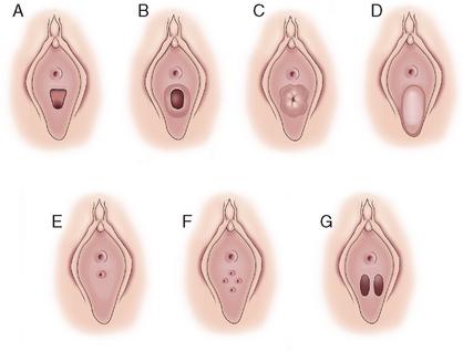 Pov penetration videos