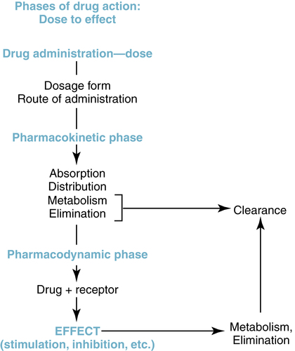pharmacodynamics drug receptors Drug receptor interaction in pharmacodynamics is a lock (receptor) and key (drug) system pharmacological receptors are macro- molecular proteins on which drugs (ligand) interact and produce a biological response either by transduction or the signaling mechanisms.