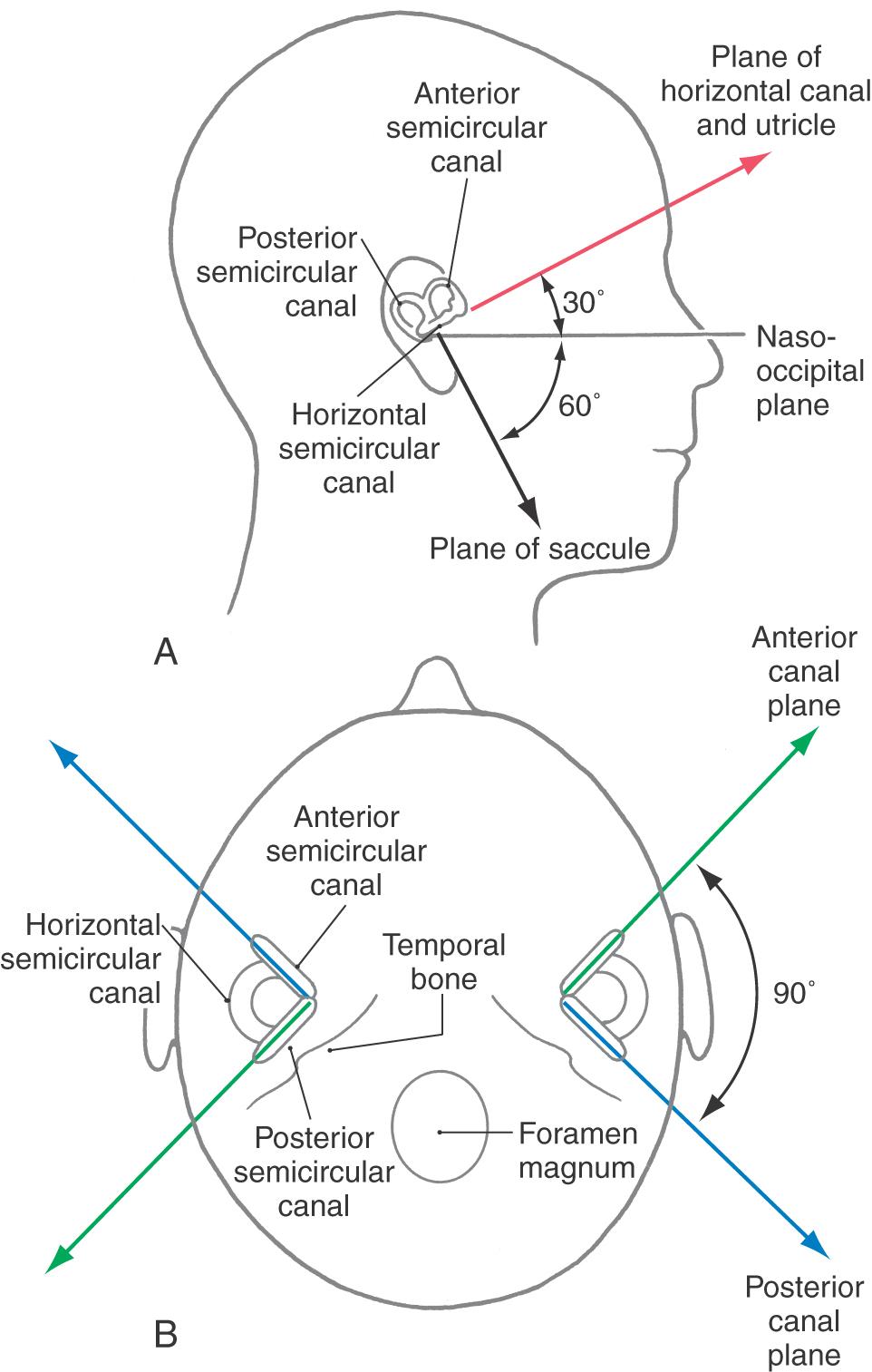 Diagram Of A Generator Head Com