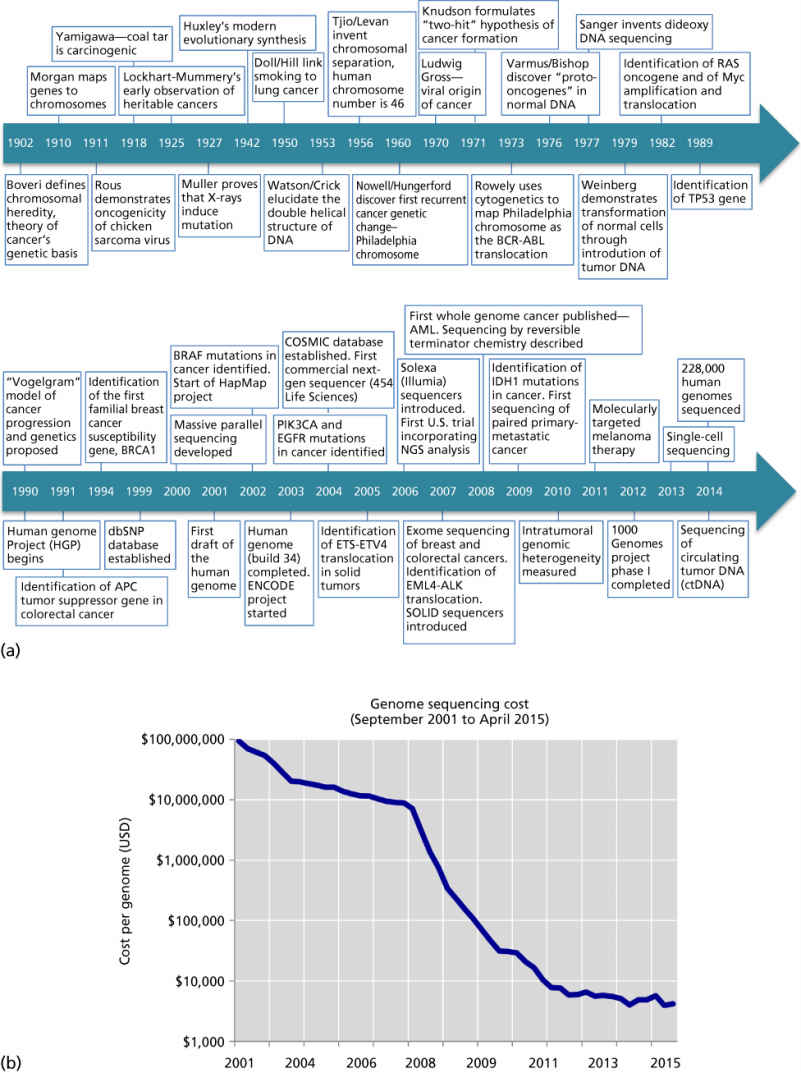 Cancer genomics and evolution | Clinical Gate